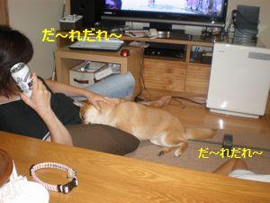 010_20100819164703.jpg