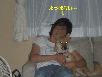 013_20100804221855.jpg