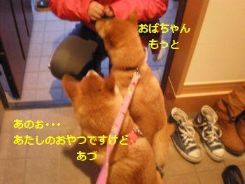 013_20110218094310.jpg