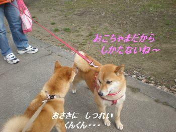 020_20100302101936.jpg