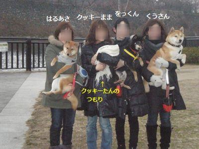 027_20110120113330.jpg