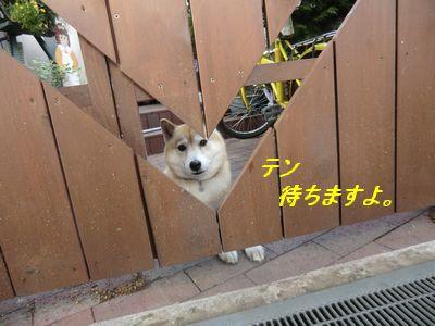 028_20110523112853.jpg