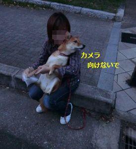 046_20110926124806.jpg