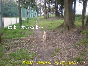 051_20100403165543.jpg