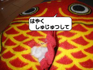 20100319_155049.jpg