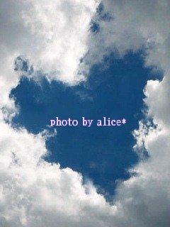 sky13-18_20101001230503.jpg