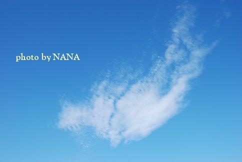sky13-23.jpg