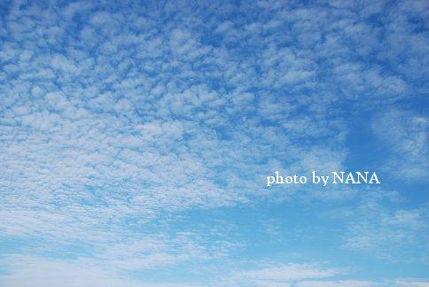 sky13-37.jpg