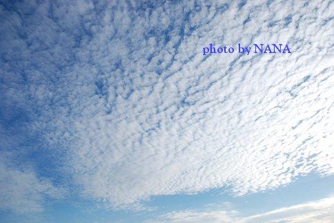 sky13-38.jpg