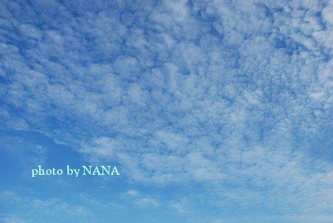 sky13-39.jpg
