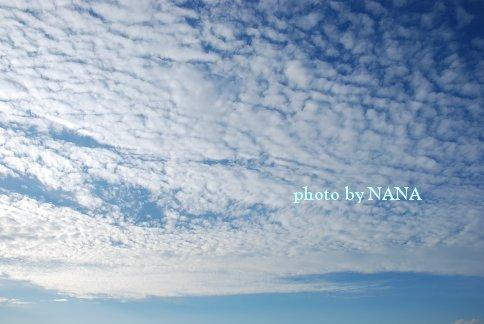 sky13-40.jpg