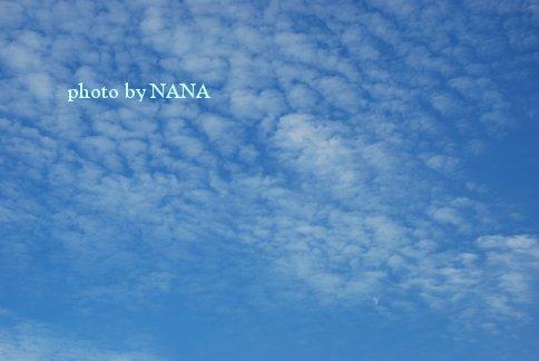 sky13-41.jpg