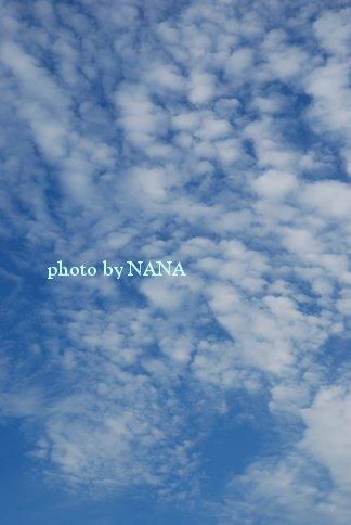 sky13-42.jpg