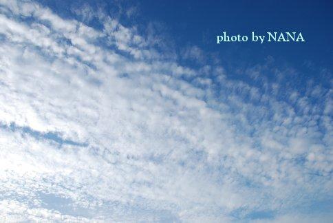 sky13-43.jpg