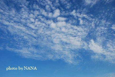 sky13-44.jpg