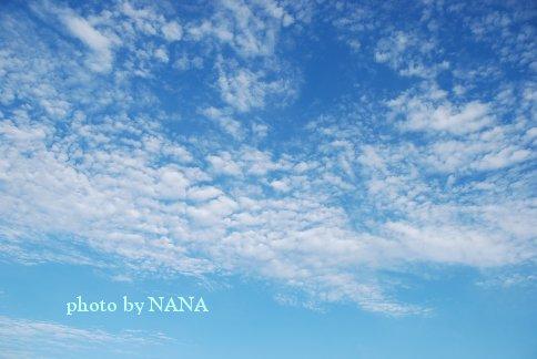 sky13-45.jpg