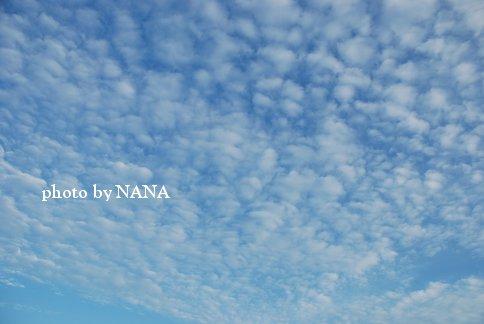 sky13-47.jpg