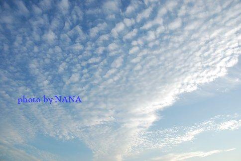 sky13-51.jpg