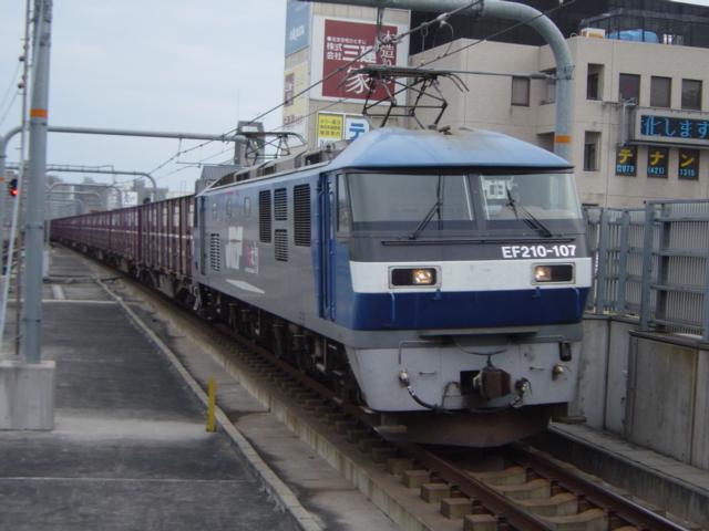 DSC05039.jpg