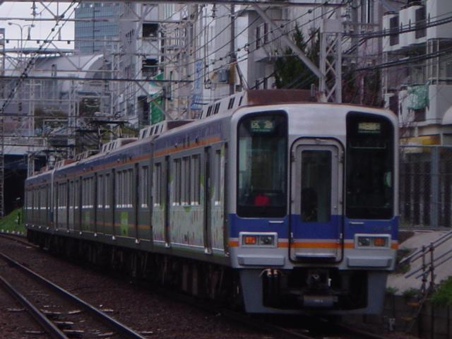 DSC06049.jpg