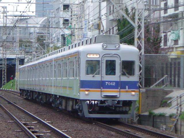 DSC06055.jpg