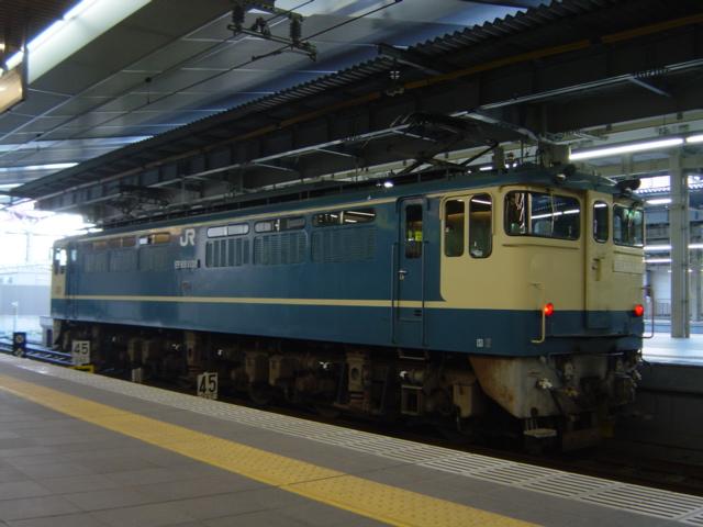 DSC06548.jpg
