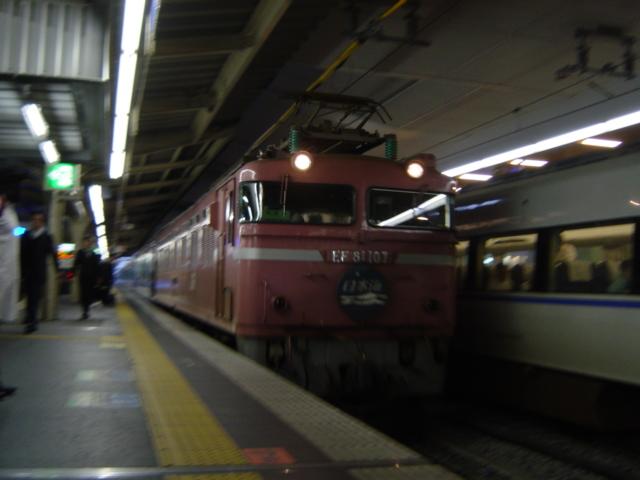DSC06584.jpg