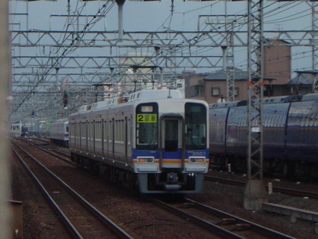 DSC07348.jpg