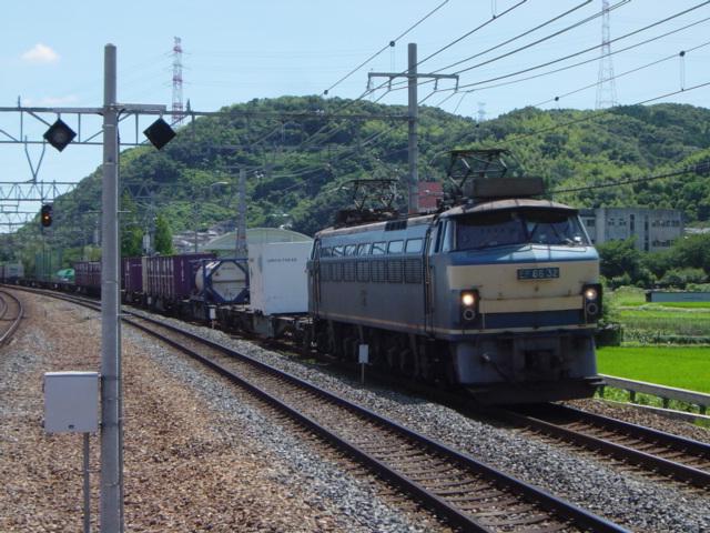 DSC07376.jpg