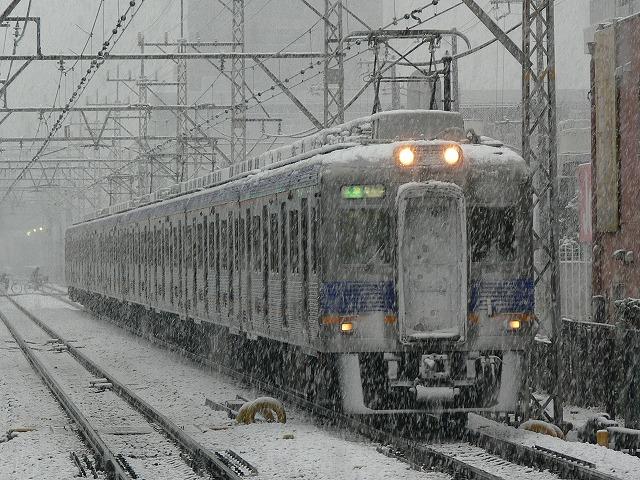P1080094.jpg