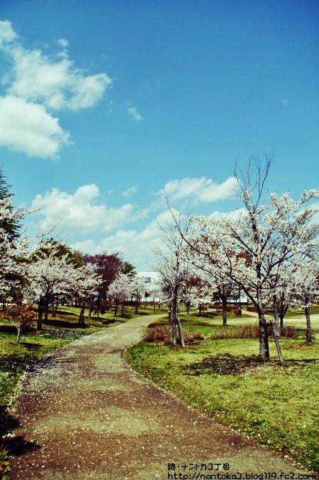 八山田公園