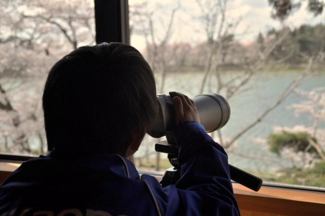 野鳥の森学習館