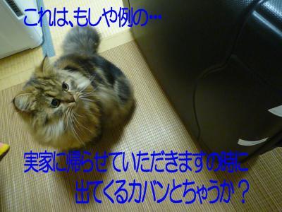 0107-2.jpg