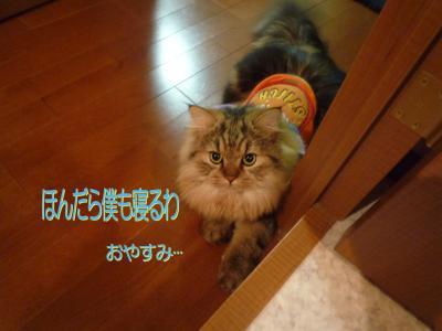 P10500141.jpg