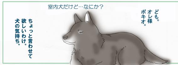 ぽきお01-1web