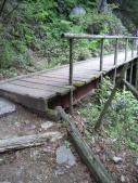 木の朽ちた橋