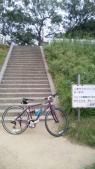 自転車かついだ階段
