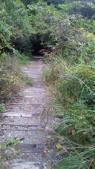 武田尾へトンネル6