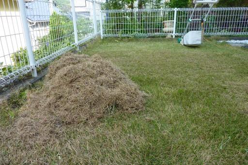 芝刈り ノッチ