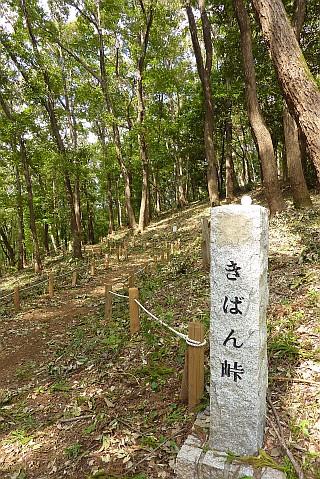 野津田公園
