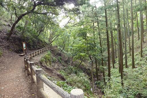 飯山白山ハイキング
