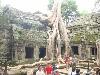 カンボジア④ (100x75)