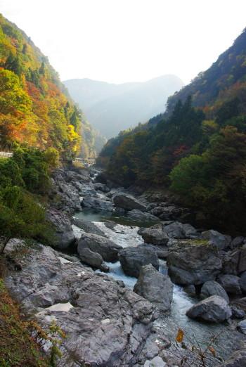 川合からの道沿い