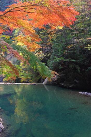 ひかりの滝3