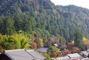 室生寺遠景2