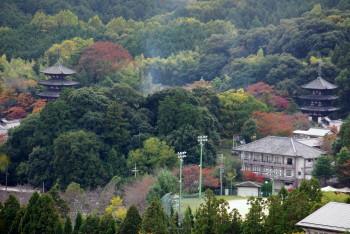 当麻寺遠景