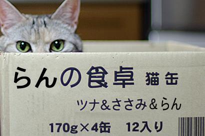 2011-07-19-01.jpg