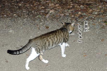 2011-09-01-8.jpg