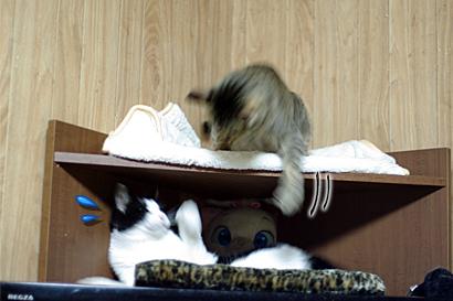 2011-09-22-3.jpg