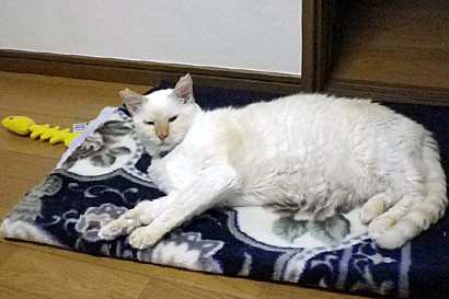 2011-09-24-5.jpg